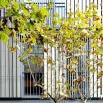Premios ASCER Edificio de Viviendas Casp 74