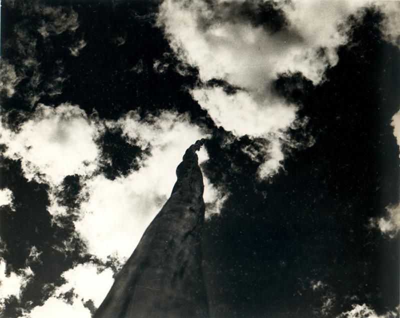 Resultado de imagen para Fotos de Mariano Zuzunaga
