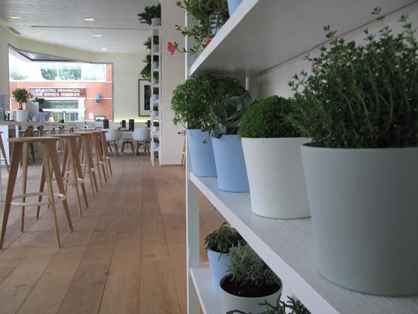 plantas en Restaurante Lateral Castellana 42 en madrid