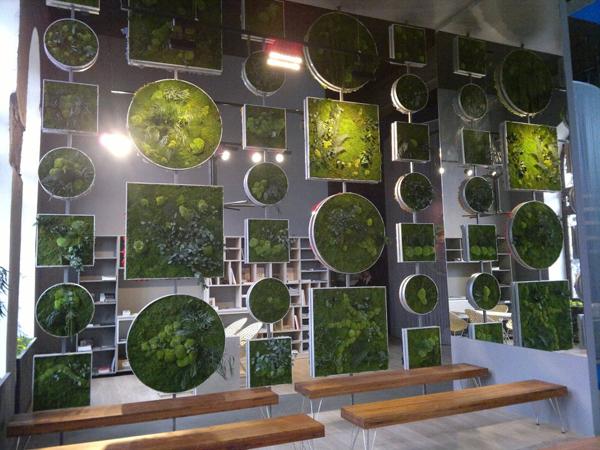 La naturaleza da la bienvenida a los visitantes en for Jardines verticales artificiales madrid