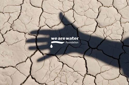 El dise o ser eco o no ser escucha a los expertos en el for We are water