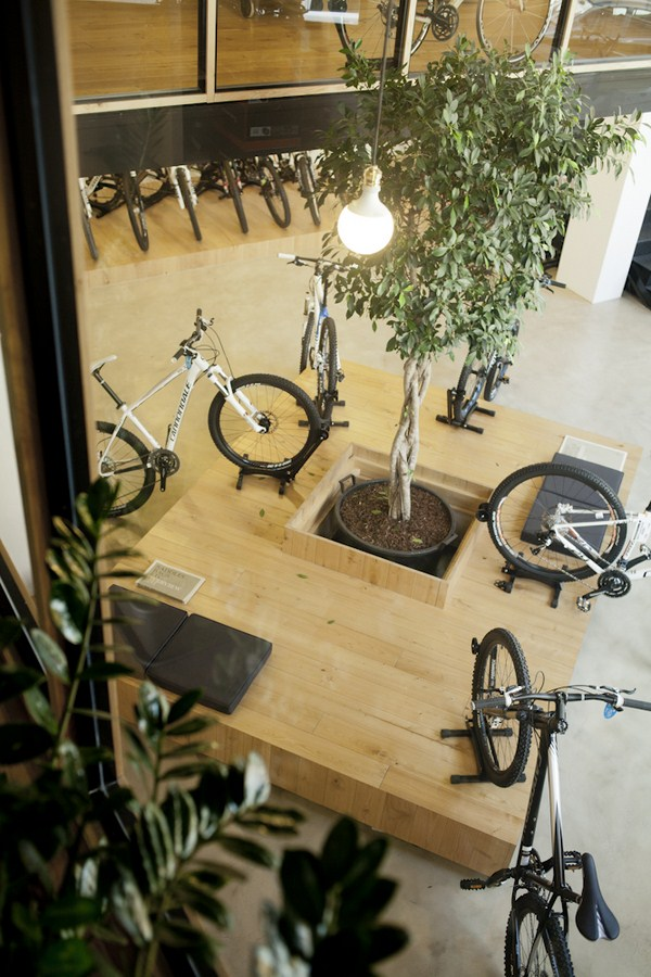 KL+B bicicletas y naturaleza tienda en san sebastian diariodesign