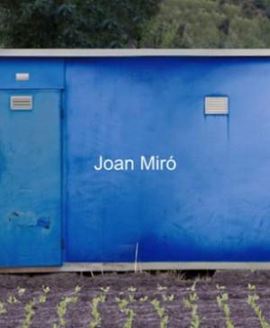 10 horts Joan Miro