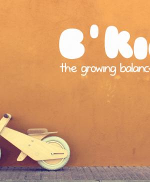 Proyecto_B'Kids