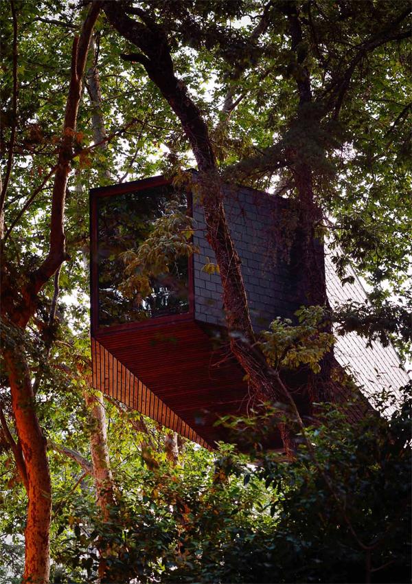 Tree Snake Houses Pedras Salgadas Rebelo de Andrade 3