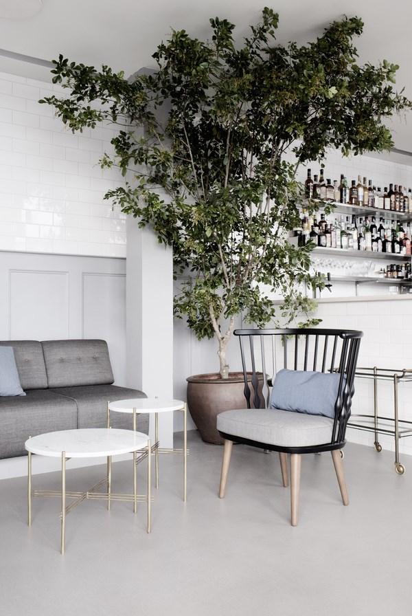 Árbol en el restaurante danés The Standard