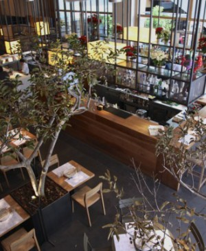 Restaurante Cuinea Sandra Tarruella México DF 7
