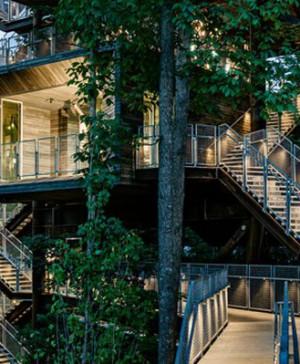 casa del árbol sostenible boy scouts diariodesign