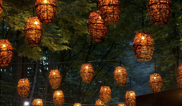 13 foresta lumina moment factory