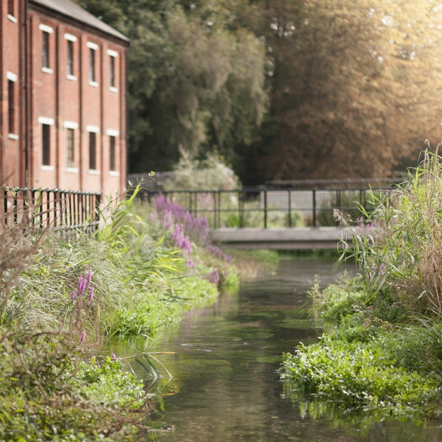6_The beautiful River Test flowing through the centre of the Bombay Sapphire Distillery at Laverstoke Mill