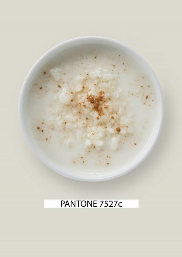 Pantone-food-arroz-con-leche-gastromedia-600x848