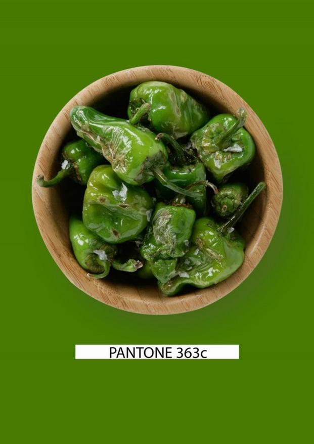 Pantone-food-pimientos-verdes-gastromedia-600x848