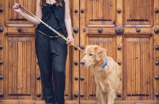 Collares para perros Brott en el design market de barcelona diariodesign