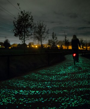 1 VanGogh path