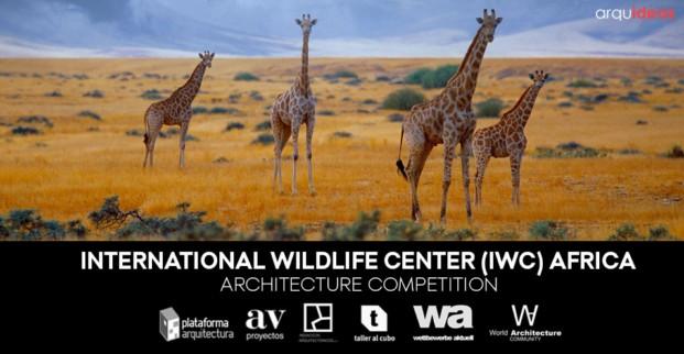 Concurso IWC Kruger National Park (2)