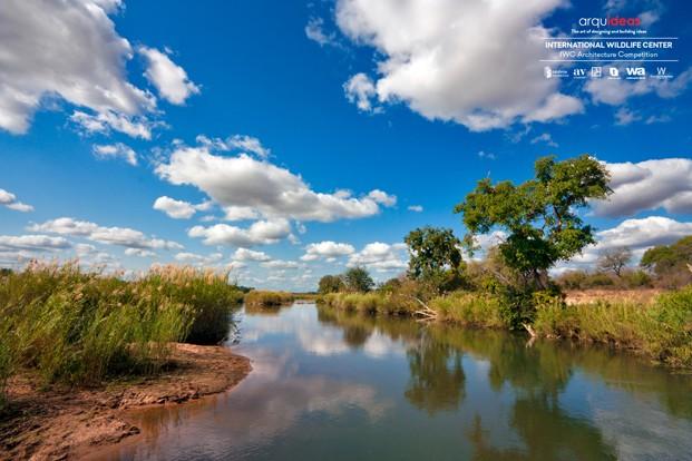 Concurso IWC Kruger National Park (5)