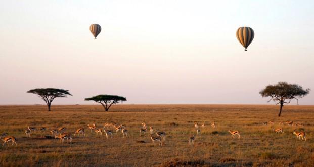 Concurso IWC Kruger National Park (7)