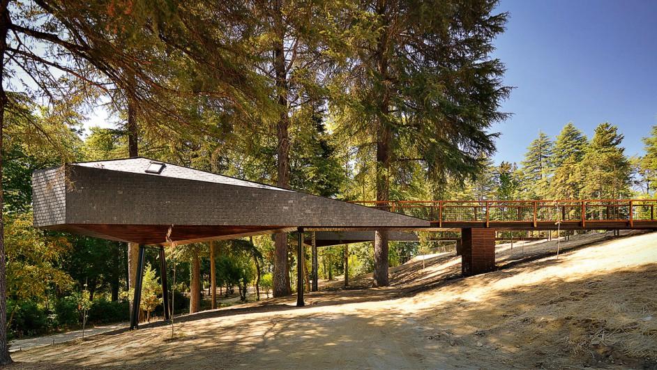 1 cabins taschen RA, Tree Snake Houses