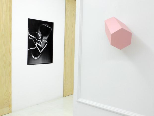 The-Apartment-(Piloto)- II-edicion-del-Premio-Ron-Barcelo-Imperial-ARCO-Madrid-GALERIA-L21 (11)