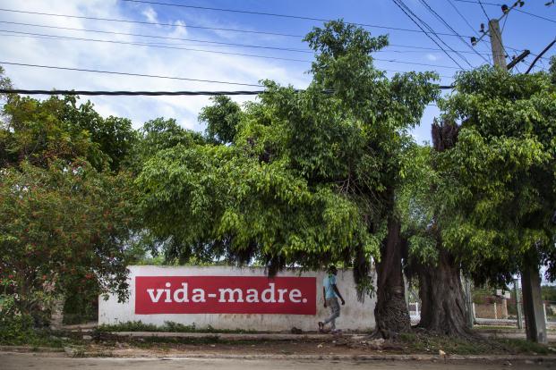 16_BoaMistura_BienalLaHabana_vida-madre