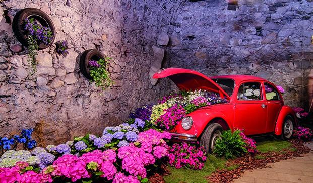Girona temps de flors 10