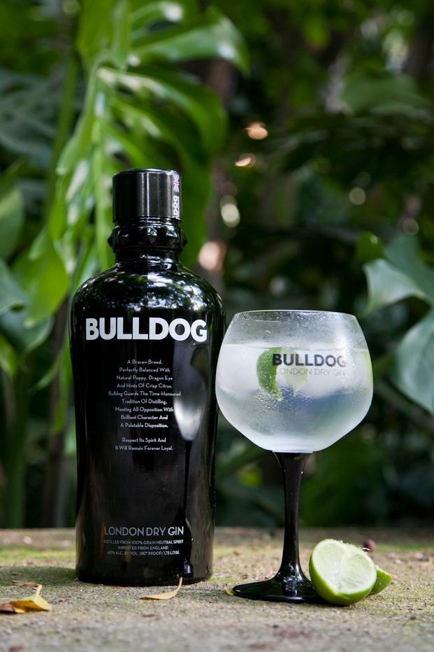 Botella y gintonic bulldog