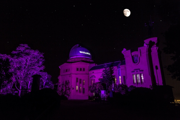 Bulldog observatorio (2)