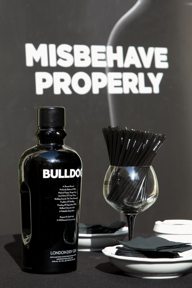 Campaña misvehave properly bulldog