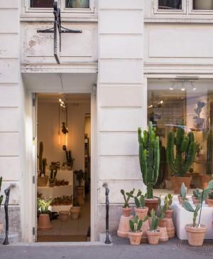Kaktus København 1 (Copiar)