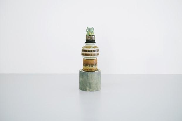 tienda de cactus en copenhage