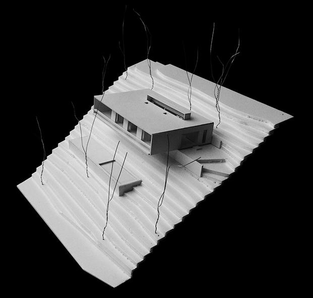 casa-llp-collserola-barcelona-alventosa-morell-arquitectes-adria-goula (23)