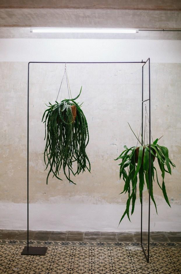floristeria sauvage
