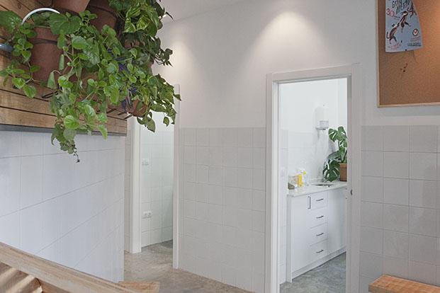 clinica veterianaria el jardin en valencia diariodesign
