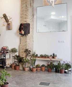 clínica veterinaria el jardin diariodesign