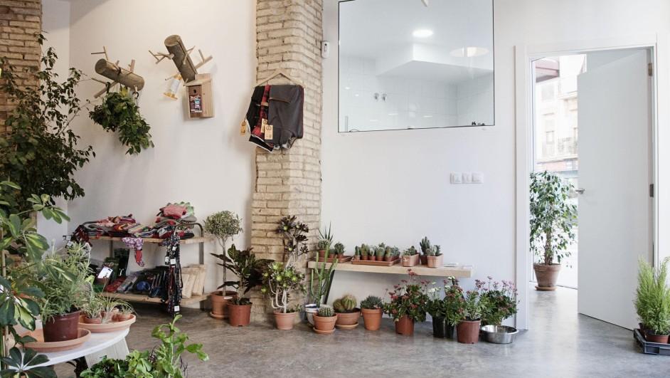 clinica veterianaria el jardin