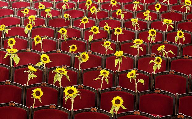 escola art floral liceu flors flores flowers arquitectura architecture