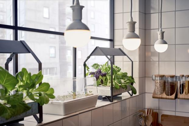ikea coleccion indoor gardening krydda