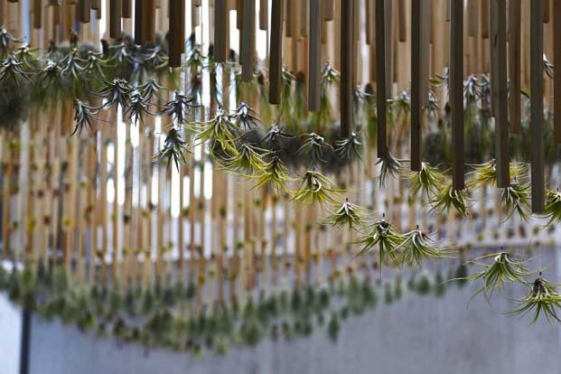 Green Air, Nomad Studio. Fotografía: Sarah Rothberg