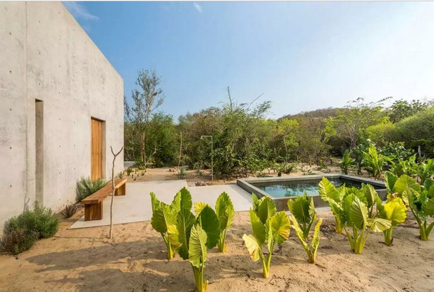 huerto casa Tiny airbnb diariodesign