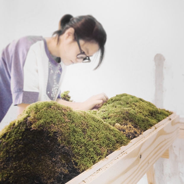 Ada_working_with_moss