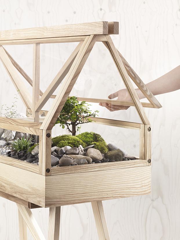greenhouse terrario en miniatura de madera diariodesign