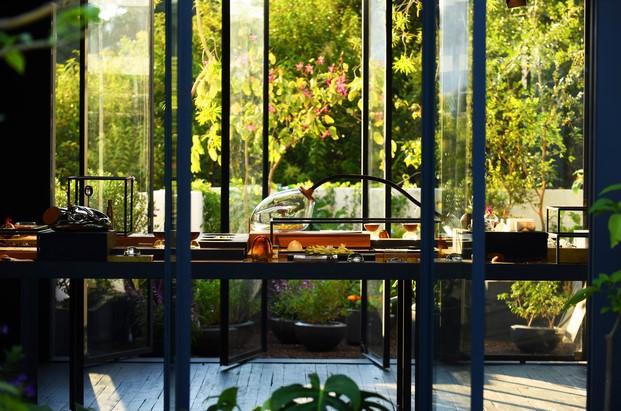 tienda xinu perfumes de Esrawe el jardin secreto en mexico diariodesign