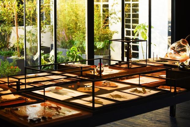xinu perfumes de Esrawe el jardin secreto diariodesign