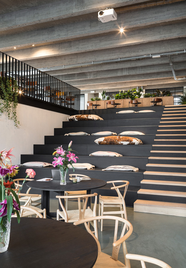 fosbury sons coworking amberes diariodesign