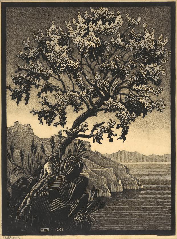 Algarrobo, 1932