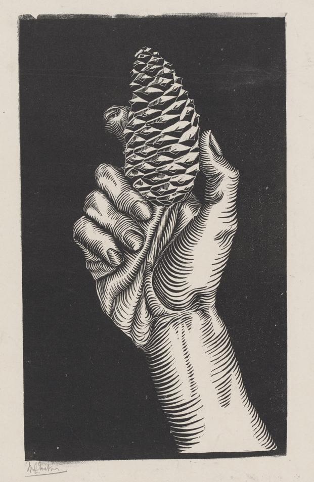 Mano con piña, 1921