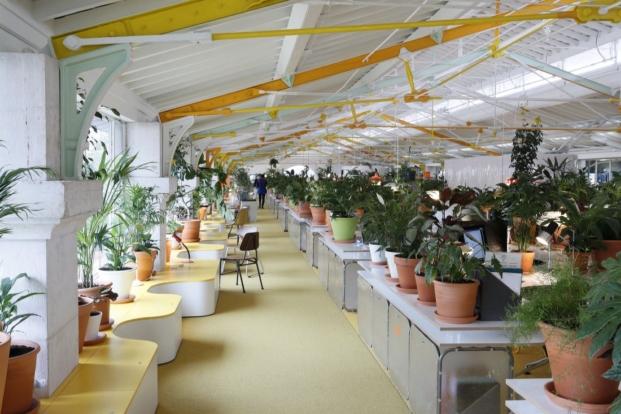 secondhome oficinas coworking selgascano