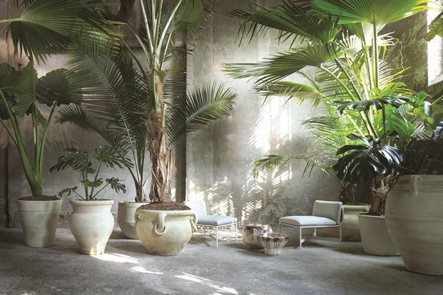 imagen de plantas en la instalacion de Paola Lenti en Milan Design Week 2017