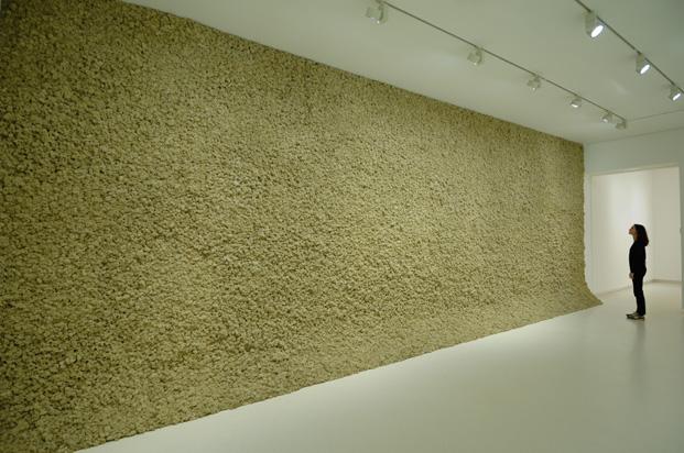 galeria Elviara gonzalez arte en madrid exposicion sentido del olfato