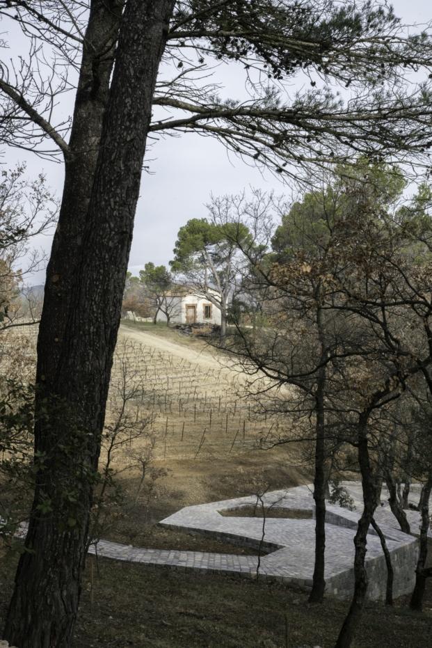viñedos en la provenza por Ai Weiwei en Chateau La Coste
